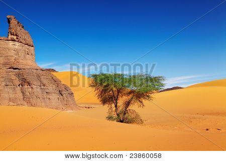 Sand dunes of Sahara Desert, Algeria