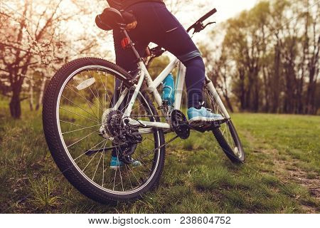 Young Woman Riding A Bicycle In Spring Forest In The Morning. Close-up Of Bike Wheel. Helathy Lifest