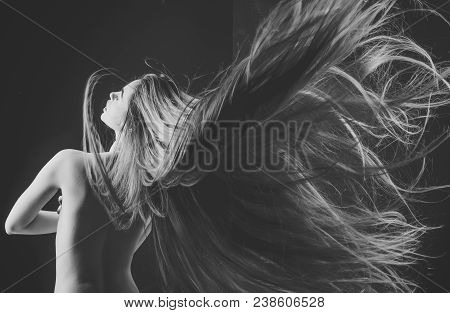 Hairdresser And Barber. Beauty Salon And Fashion. Woman With Stylish Long Hair And Naked Back. Hairc