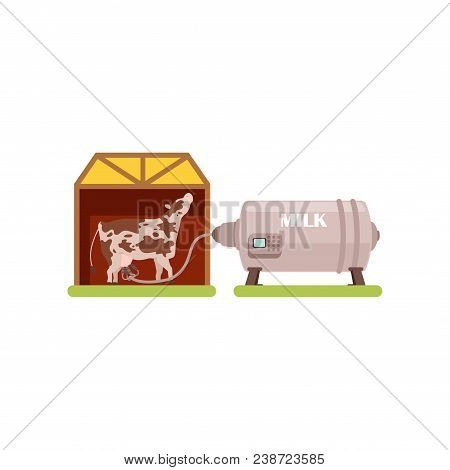 Cow And A Milking Machine, Production Of Milk, Dairy Industry Vector Illustration Isolated On A Whit