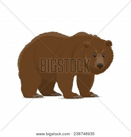 Brown Bear Animal Cartoon Icon Of Wild Forest Predator. Grizzly Bear Standing And Looking At Viewer