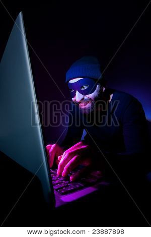 Thief Using Computer To Steal