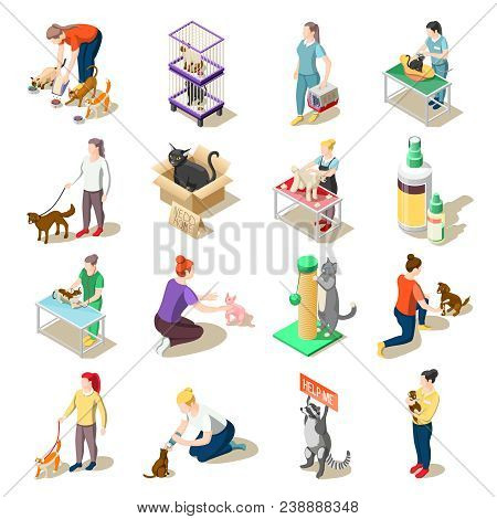 Set Of Isometric Icons Animal Care Volunteers, Feeding, Walking And Grooming, Veterinary Inspection