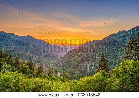 Great Smoky Mountains National Park, Tennessee, USA sunset landscape over Newfound Gap.