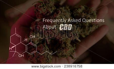 Buds Of Cannabis Marijuana With The Image Of The Formula Cbd Cannabidiol