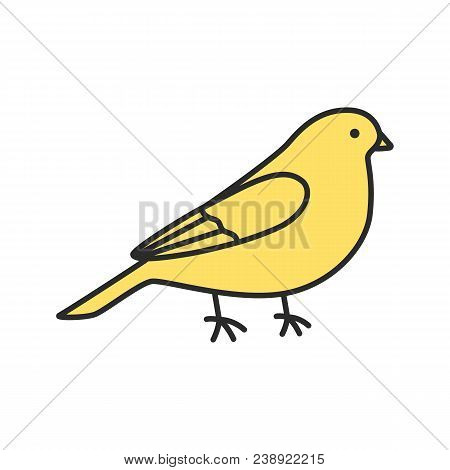 Canary Color Icon. Songbird. Isolated Vector Illustration