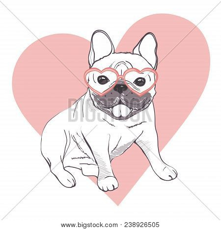 Funny Puppies French Vector Photo Free Trial Bigstock