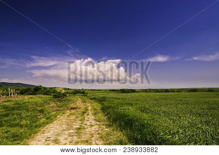 Hiking Through Countryside Landscape. Absolute Freedom. Green Field And Clouds Landscape. Summer Lan