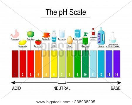 Ph Scale. Universal Indicator Ph. Test Strips Use For Track And Monitor Ph For Alkaline And Acid Lev