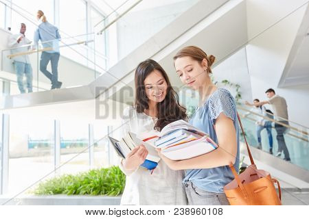 Two women as students in university study together in teamwork