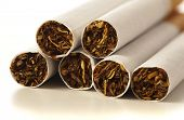 extreme closeup of cigarettes on white background poster