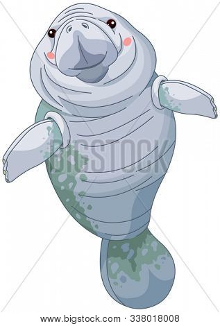 Illustration of vary cute Manatees