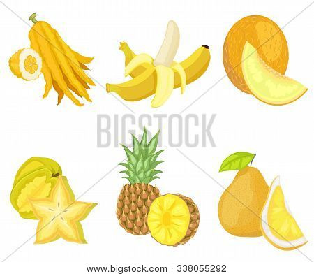 Exotic Lush Fruits Of Yellow Color Vector, Set Of Isolated Banana And Citron, Melon And Pineapple Wi