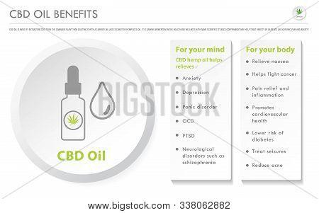 Cbd Oil Benefits Horizontal Business Infographic