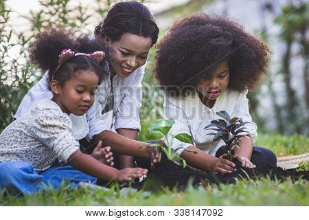 Save World Concept - Mother And Daughter Are Planting Fun Little Trees On The Fence Of His House.
