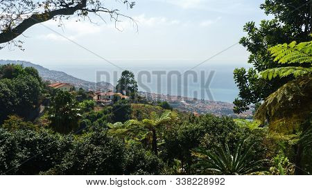 Monte Tropical Gardens With View Of Palace On Atlantic Ocean, Funchal, Madeira Island, Portugal