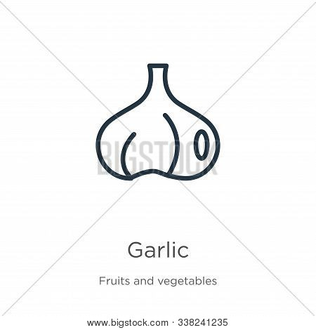 Garlic Icon. Thin Linear Garlic Outline Icon Isolated On White Background From Fruits Collection. Li