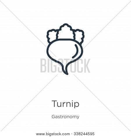Turnip Icon. Thin Linear Turnip Outline Icon Isolated On White Background From Gastronomy Collection