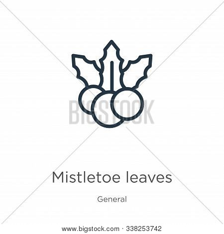 Mistletoe Leaves Icon. Thin Linear Mistletoe Leaves Outline Icon Isolated On White Background From G