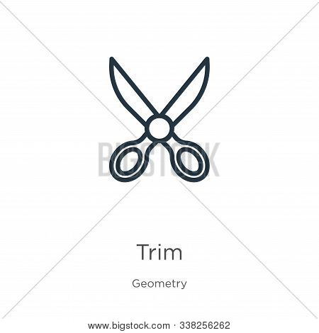 Trim Icon. Thin Linear Trim Outline Icon Isolated On White Background From Geometry Collection. Line