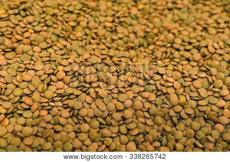 Lentils Background. Green Pattern. Natural Organic Lentils For Healthy Food