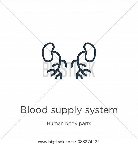 Blood Supply System Icon. Thin Linear Blood Supply System Outline Icon Isolated On White Background