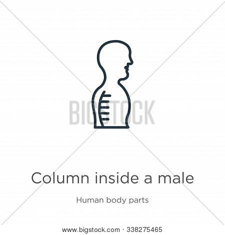 Column Inside A Male Human Body In Side View Icon. Thin Linear Column Inside A Male Human Body In Si