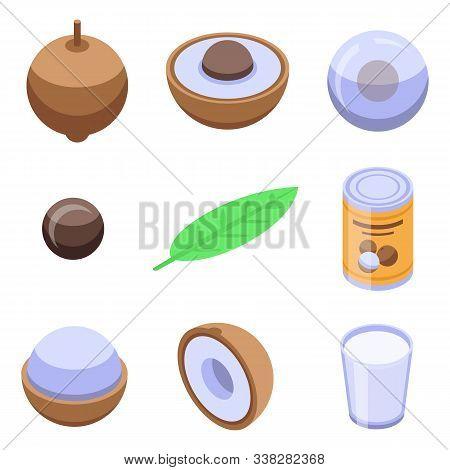 Longan Icons Set. Isometric Set Of Longan Vector Icons For Web Design Isolated On White Background