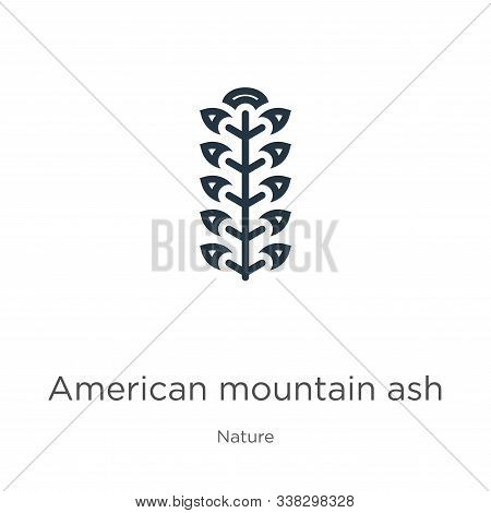 American Mountain Ash Icon. Thin Linear American Mountain Ash Outline Icon Isolated On White Backgro
