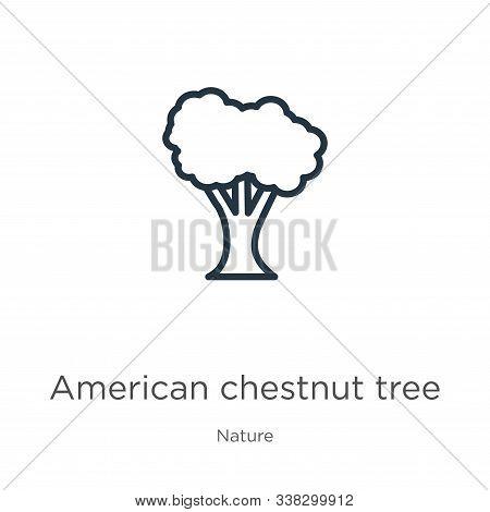 American Chestnut Tree Icon. Thin Linear American Chestnut Tree Outline Icon Isolated On White Backg