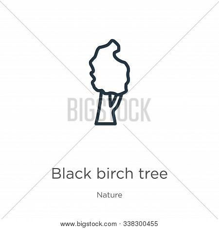 Black Birch Tree Icon. Thin Linear Black Birch Tree Outline Icon Isolated On White Background From N