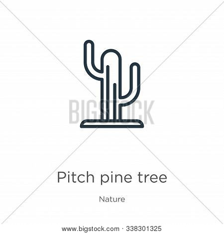 Pitch Pine Tree Icon. Thin Linear Pitch Pine Tree Outline Icon Isolated On White Background From Nat