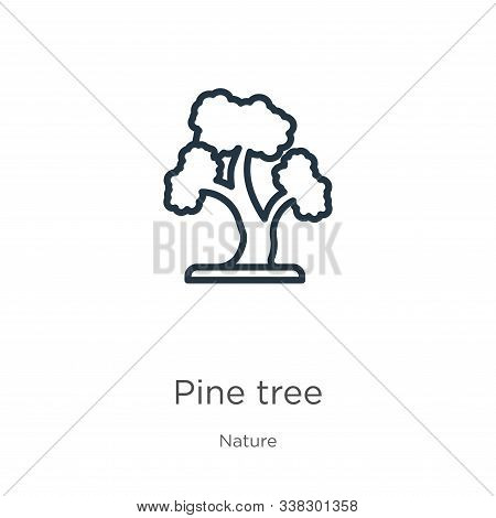 Red Pine Tree Icon. Thin Linear Red Pine Tree Outline Icon Isolated On White Background From Nature