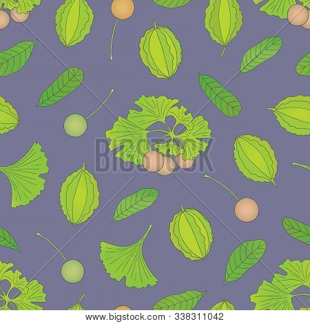 Medicinal Herbs Collection. Vector Hand Drawn Seamless Pattern With Terminalia Arjuna And Ginkgo Bil