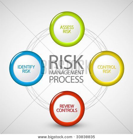 Vector Risk management process diagram schema