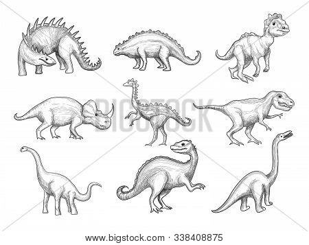 Dinosaurs Collection. Extinction Wild Herbivorous Angry Animals In Paleontology Ages Vector Sketch D