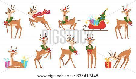 Cartoon Deer. Winter Celebration Fairytale Animals Reindeer Running Vector Christmas Character. Rein