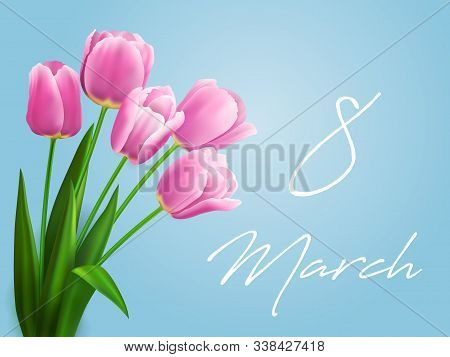 8 March Flowers Vector Greeting Card Of Women Day Holiday Design. Spring Tulips Floral Bouquet Of Pi