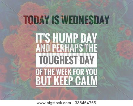 Image With Wordings Or Quotes About Wednesday, Hump Day