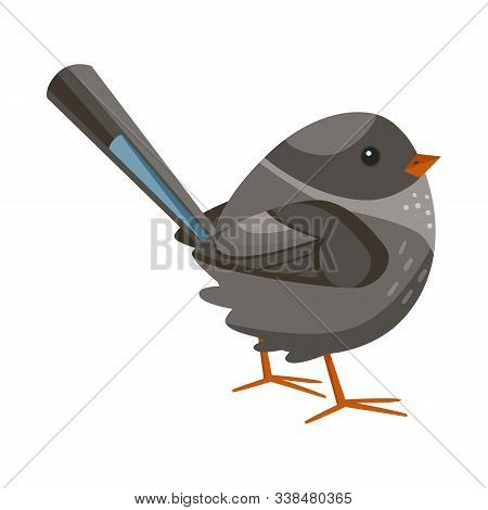 Vector Design Of Bird And Sparrow Symbol. Collection Of Bird And Brown Vector Icon For Stock.