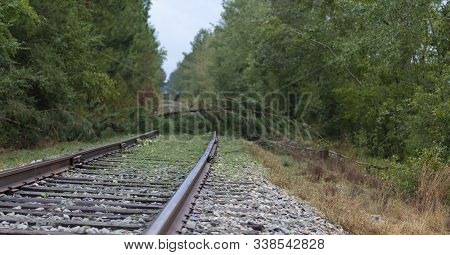 Trees Across A Railroad Line Near Fayetteville North Carolina After Hurricane Florence