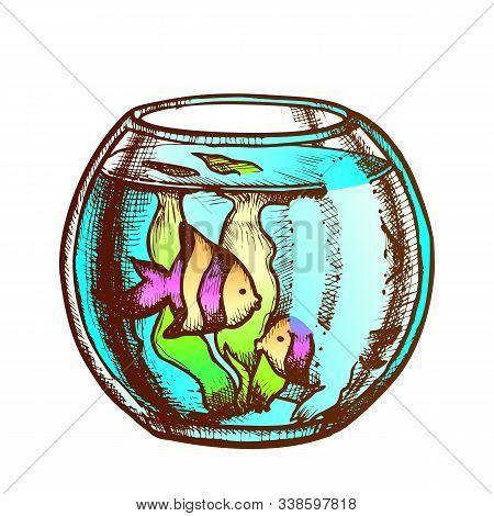 Aquarium With Decorative Fish Monochrome Vector. Home Aquarium Or Fishbowl With Seaweed. Animal Pet