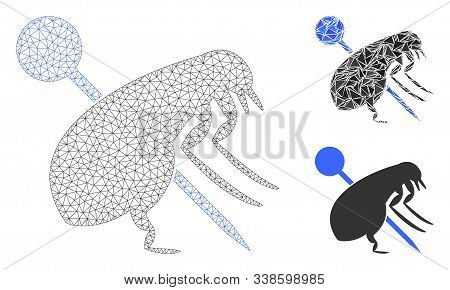 Mesh Pinned Flea Model With Triangle Mosaic Icon. Wire Frame Polygonal Mesh Of Pinned Flea. Vector M