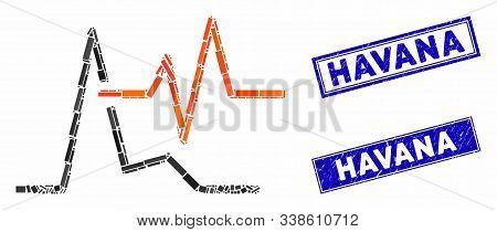 Mosaic Ecg Pictogram And Rectangle Havana Stamps. Flat Vector Ecg Mosaic Pictogram Of Randomized Rot