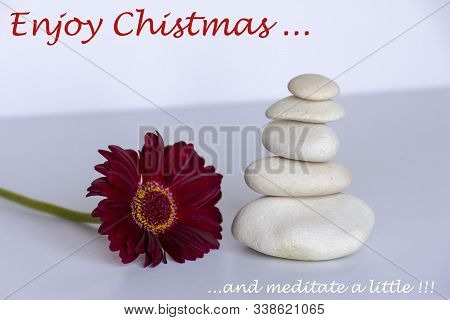 White stone in balance on white background with a red red gerbera daisy, flower, Text: