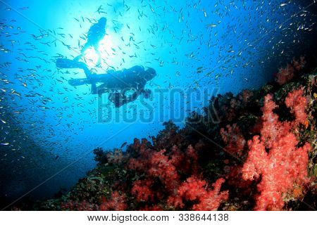 Underwater photographer scuba dives on coral reef
