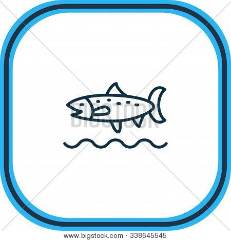 Vector Illustration Of Trout Fish Icon Line. Beautiful Marine Element Also Can Be Used As Codfish Ic
