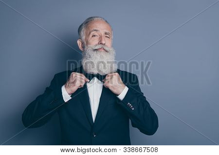 Close-up Portrait Of His He Nice Attractive Content Proud Arrogant Gray-haired Man Wearing Tux Fixin