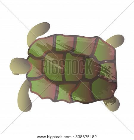 Vector Watercolor Turtle. Vector Illustration For Greeting Cards, Invitations, And Other Printing An