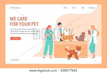 Veterinary Clinical Help. Dog And Cat Doctors Giving Vaccinations, Measure Temperature And Take Test